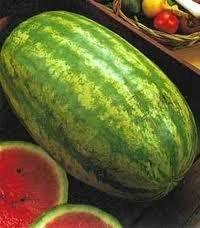 Watermelon Striped Klondike Blue Ribbon Great Heirloom Garden Vegetable Seeds by Seed Kingdom (25 Seeds) ()