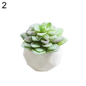 XKSIKjian's Artificial Plants, 1Pc Artificial Succulent Bonsai DIY Garden Office Decor Flowers, Fakeflowers Bouquet Wedding Party Home Decoration - 2# 12