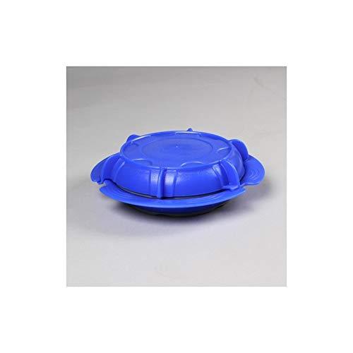 Plato termo con tapa. 23 cm azul: Amazon.es: Hogar