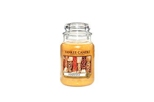 Yankee Candle Company Harvest Large Jar Candle