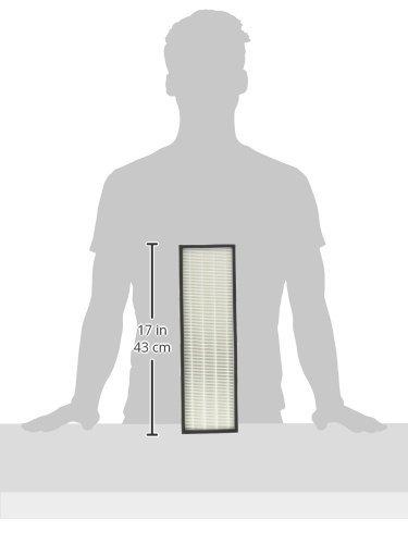 Altec Filters 2 True HEPA Filters & 8 Carbon Active Pre