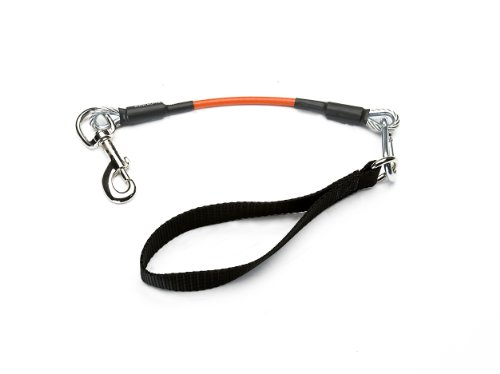 VirChewLy Indestructible Traffic Lead for Dogs, Large/23-Inch, Orange, My Pet Supplies