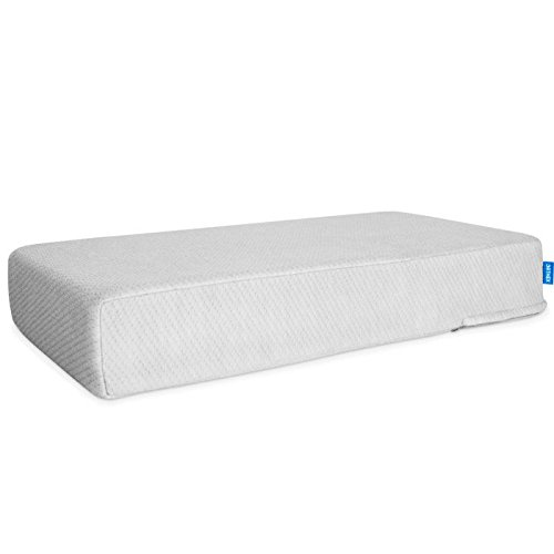 canada cushion - 6