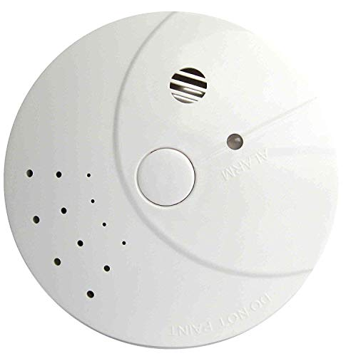 Combination Smoke and Carbon Monoxide Detector, Battery Operated Combo Photoelectric Portable Fire&Co Alarm for Travel, Home and Kitchen