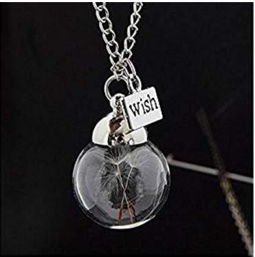 Yolandabecool Collana Semi di tarassaco naturale in collana di vetro Make A Wish  Gioielli in argento