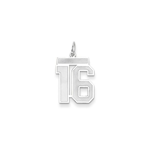 (Best Birthday Gift 14k WG Medium Satin Number 16 Charm)