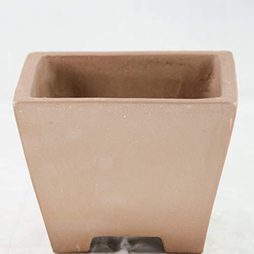 Square Semi Cascade Zisha Bonsai Pot and Orchid Planter - 6.5