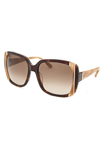 fdc679158913e Salvatore Ferragamo SF672 214 Women s Sunglasses
