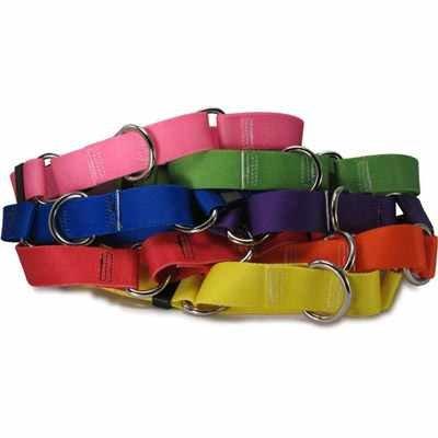 Unique and Durable DOG COLLARS -Dog Collar -Collar -Adjustable Dog Collar -Pet Supplies -Custom Dog Collars -Cool Dog Collars -Cute Dog Collars -Fancy Dog Collar -Hot Dog Collars -Online Pet Supplies, My Pet Supplies