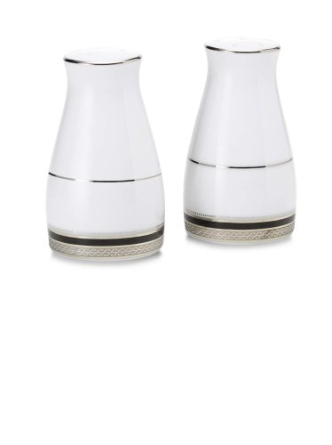 Noritake Austin Platinum Salt and Pepper
