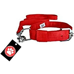 Pawzone Nylon Red Leash With Collar Set For Dogs – Medium
