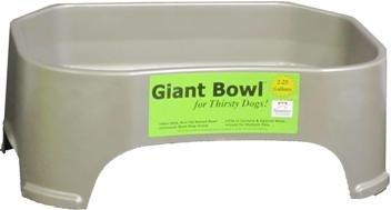 Giant Bowl - 3