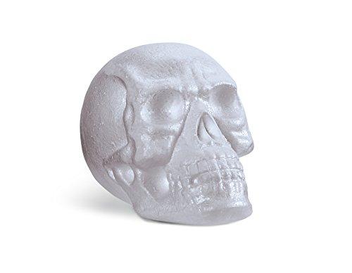 FloraCraft EPS Skull Head with No Neck (Foam Skull)