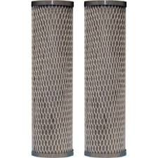 CFS COMPLETE FILTRATION SERVICES EST.2006 Taste and Odor Filter Cartridge for Under Sink Or Countertop Applications, Model Number 42-34370 2 Pack