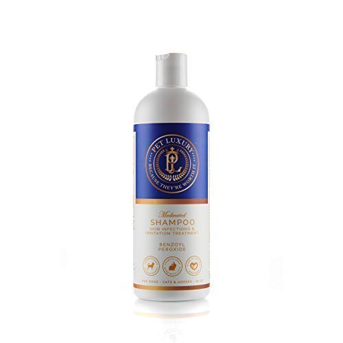 Pet Luxury-Best Medicated Anti-Fungal & Antibacterial Pet Shampoo for Dogs, Cats & Horses- for The Treatment Seborrhea-Skin Infections & Irritation, 2.5% Benzoyl Peroxide, 2.0% Sulfur, Aloe Vera Gel