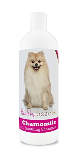 Healthy Breeds Chamomile Dog Shampoo & Conditioner with Oatmeal & Aloe for Pomeranian  - OVER 200 BREEDS - 8 oz - Gentle for Dry Itchy Skin - Safe with Flea and Tick Topicals
