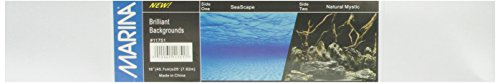Marina Seaview Aquarium Background Seascape/Natural Mystic