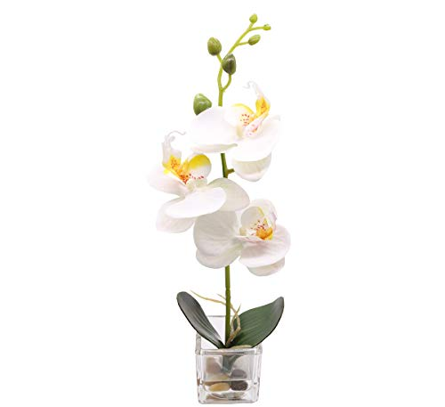 GXLMII Mini Artificial Flowers Bonsai Lifelike Real Touch Arrangement Phalaenopsis Silk Orchid Wedding Party Home Centerpiece Decor