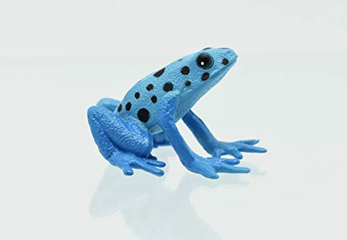 - Collectible Wildlife Gifts Blue Poison Dart Frog Plastic Replica 2
