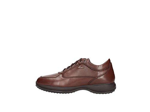 Igi&co 8697100 Sneakers Uomo Marrone