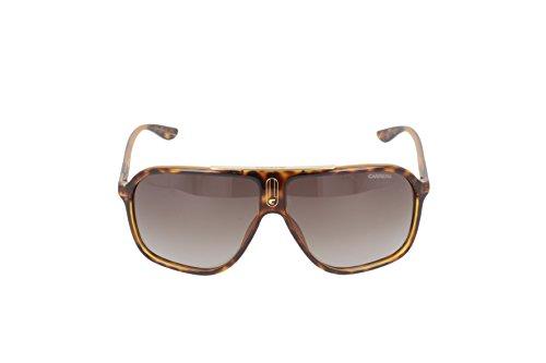 para Carrera sol S 6016 Havana de Rectangulares Gafas hombre wBOfa