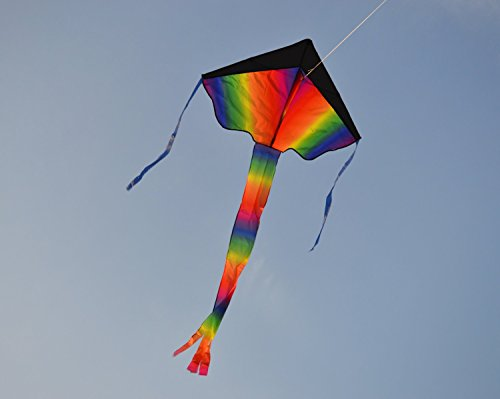 Delta Kite 42 X 26 Inch with 62 Inch Rainbow Tail Easy Flyer includes string and handle