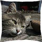 Cat - Throw Pillow Cover Case (18