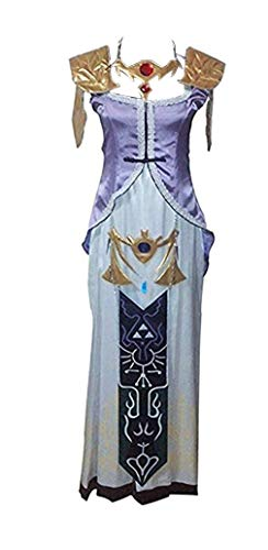 HOLRAN The Legend of Zelda: Twilight Princess Cosplay Costume (Large) Purple -