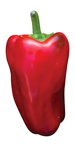 Hybrid Hot Pepper (Burpee Sweet Heat Hybrid Hot Pepper Seeds 20 seeds)