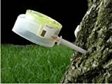 Mauget Imisol 4ml, Tree Injector Combination of Insecticide & Fungicide, Containing Imidacloprid & Debacarb (Imicide, Fungisol) (4)
