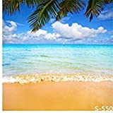 LFEEY New Arrival Fashion Vinyl Thin Backdrop,3x5ft Photography Background,Holiday,Scenic Theme,Seaside Sandy Beach,Attractive Backdrop,1(W)x1.5(H)m For Photo Studio Props,Foldable And Reusable
