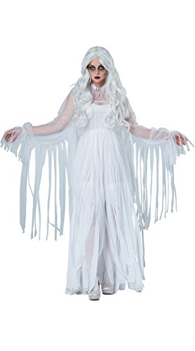 Wonder Woman Spirit Costume (California Costumes Women's Ghostly Spirit, White, Large)