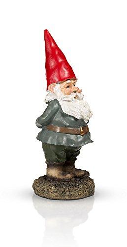 THE Garden Gnome 10'' by GardenGnomeWorld.com (Image #4)
