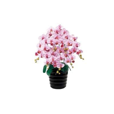 人工観葉植物 ピュアオーキッド7本立(ファレノ)ラベンダー 光触媒加工 高さ78cm zv6700b (代引き不可) インテリアグリーン 造花 B07SXF881C