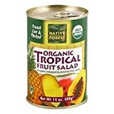 NATIVE FOREST SALAD FRUIT TROPICAL, 14 OZ