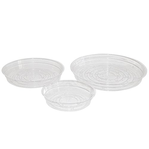 Clear Plant Saucer Drip Trays - Assorted Sizes For Large To Small Pots