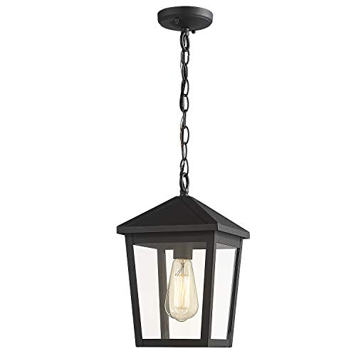 Zeyu Outdoor Pendant Light, Exterior Hanging Light Ceiling Lantern for Hallway Porch, Black Finish with Clear Glass, 20076H