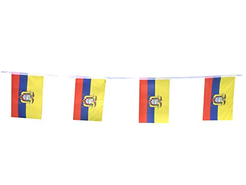 Ecuador Flags Ecuadorian Small String Flag Banner Mini National Country World Flags Pennant Banners For Party Events Classroom Garden Olympics Festival Grand Opening Clubs Decorations (Ecuador)