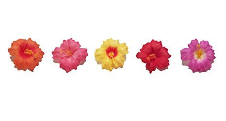 Assorted Hibiscus Hair Clips - Hawaiian Hair Clip - Hawaiian Flower Hair Clip - Hibiscus Hair Clip Bulk - Hibiscus Hair Clip Red - Hibiscus Hair Clip Pink - Hibiscus Hair Clip Purple - Set of (Hawaiian Beauty Costume)
