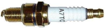CHAMPION OE063//T10 Candela EX Rc10YC4