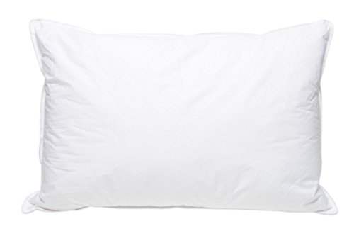 Pillowtex High End White Goose Down Soft Pillow Standard