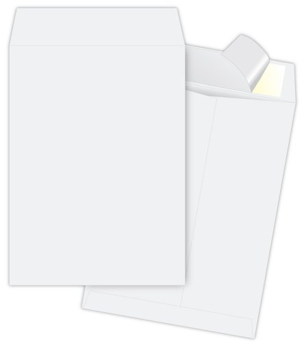 Expansion End White Plain Envelopes (Quality Park Tyvek Jumbo Survivor Envelopes, 13 x 19 inches ( R5101))