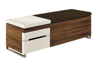 Exceptional Cognita Storage Bench   Quick Ship ! Cushion Fabric: Chocolate Gallery