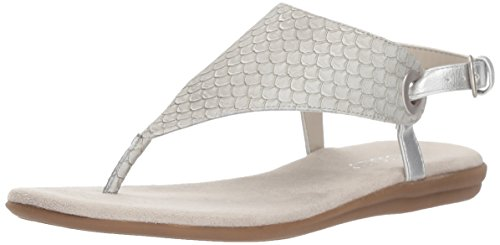 Aerosoles Snake Silver Gladiator Conchlusion Sandal Women's 0wvq4r0