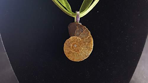 Fossil Ammonite Pendant 18