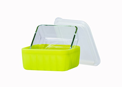 Frego Award-Winning Plastic-Free Glass and Silicone Food Container | 2 Cups | Green