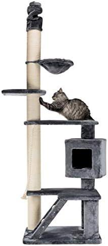 Poste Rascador XXL Tizian, del Suelo al Techo 2,40 m: Amazon.es: Productos para mascotas