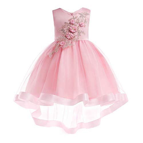 NOMSOCR Kids Lace Embroidery Costume Dress Girl Princess