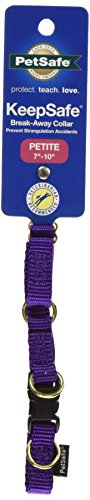 PetSafe KeepSafe  Dog Collar, Petite, 3/8-Inch, Deep Purple