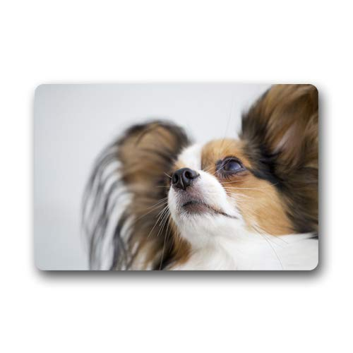 CustomLittleHome Papillon Face Custom Doormats Rug Non Slip Mats Indoor/Outdoor/Bathroom/Decor Area Rug(23.6x15.7 inch)